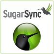 sugarsync-button